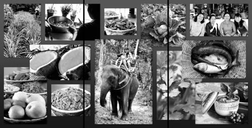 Three panel collage